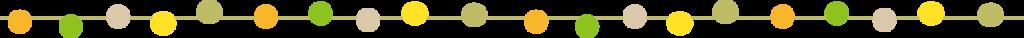 エステ 脱毛 フェイシャル リフトアップ 小顔 ダイエット シェイプ エステサロン エステティシャン 美顔 痩身 エイジング エステサロン 金沢 石川
